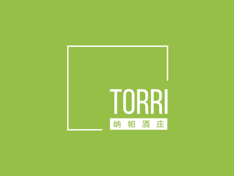 torriLOGO设计