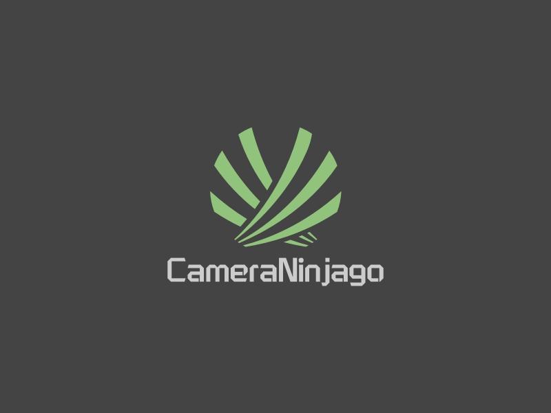 CameraNinjagoLOGO设计