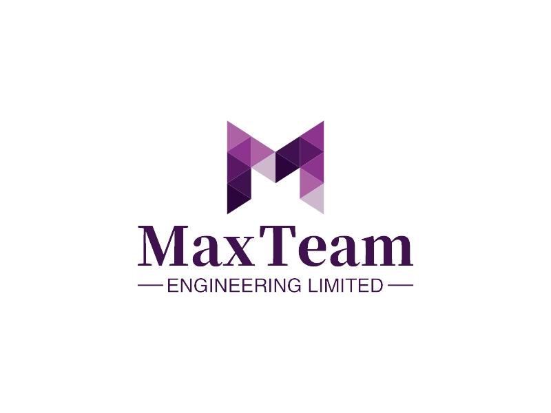 Max TeamLOGO设计