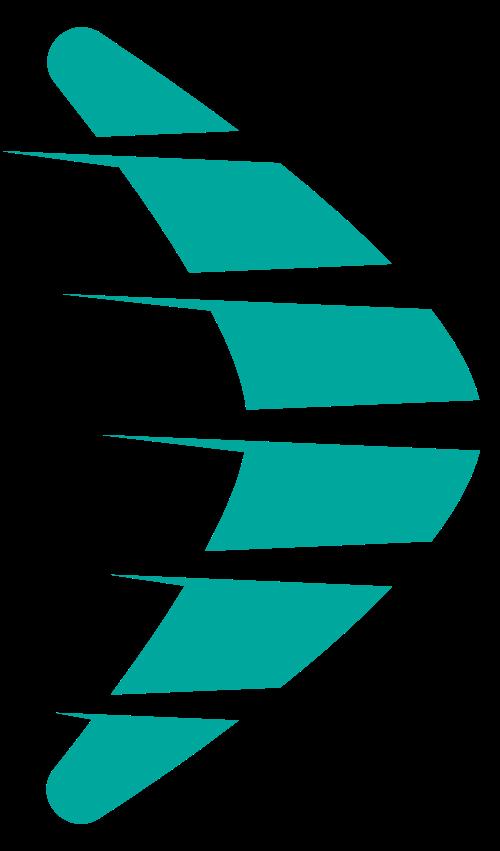 速度飞行翅膀logo图标矢量logo