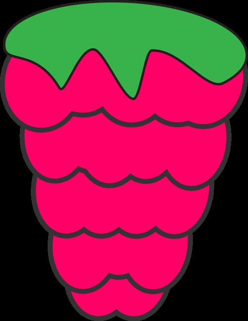 粉色葡萄矢量logo图标
