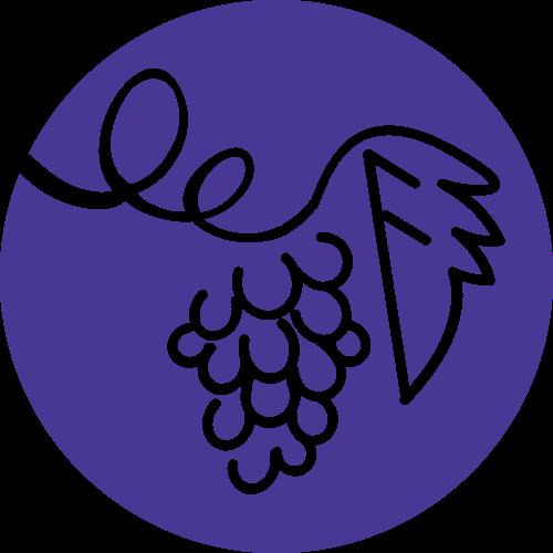 紫色圆形葡萄矢量logo图标