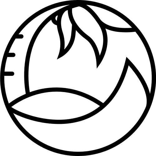 圆环椰树海边矢量图形