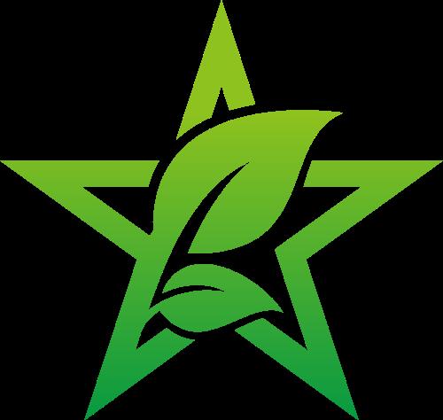 五角星树芽矢量logo