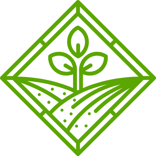 沙漠树苗创意矢量 logo
