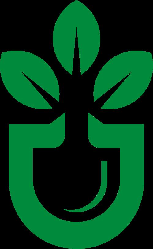花盆花朵绿色植物图案